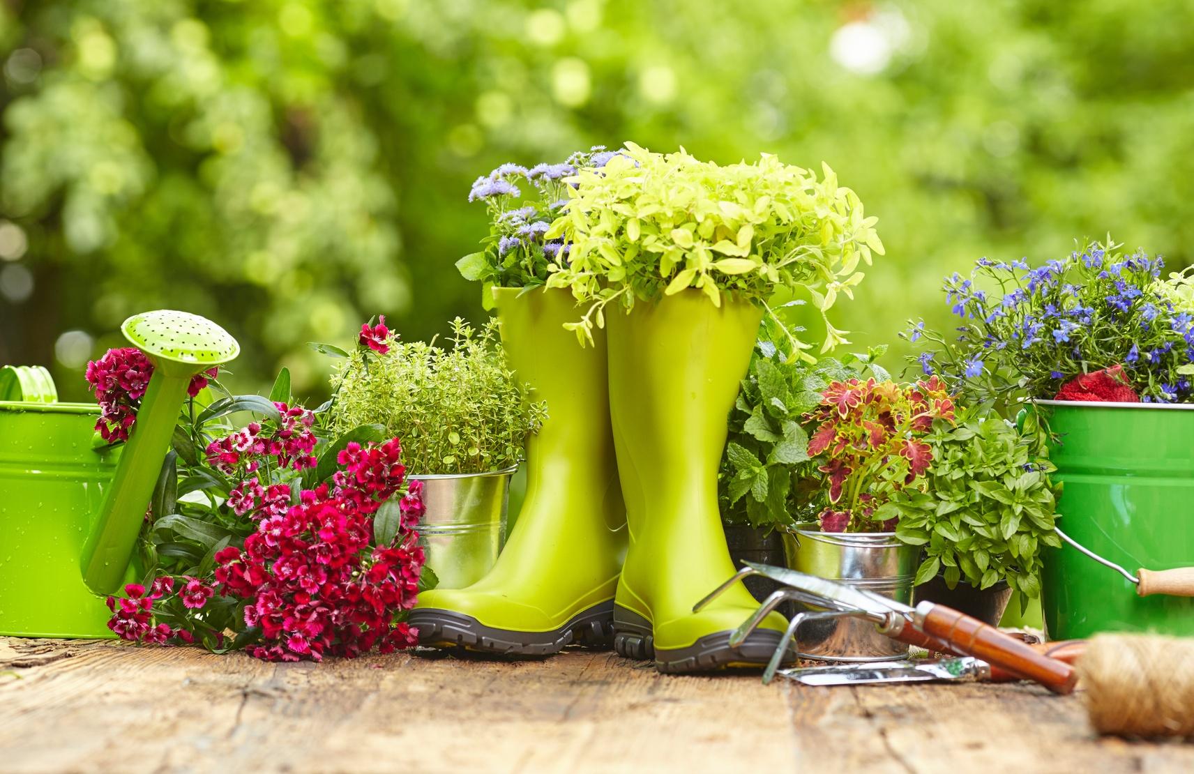 Pomladno vrtnarjenje - Ustvarjanje skupnosti v vašem marketinškem načrtu